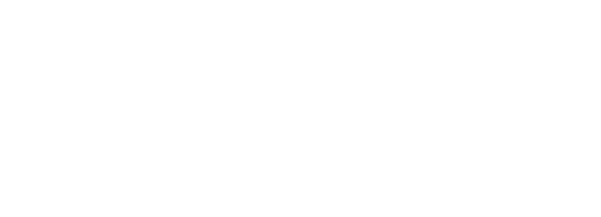 Texas Small Business logo